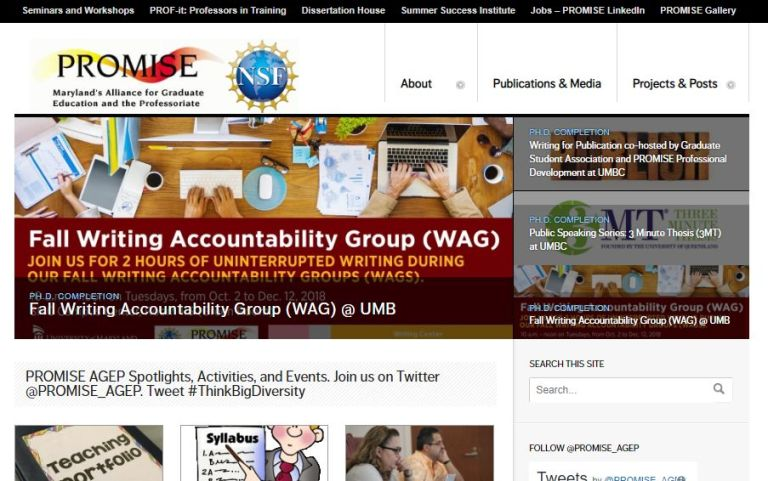 PROMISE AGEP website